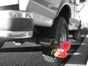 truck with flowers in tailpipe