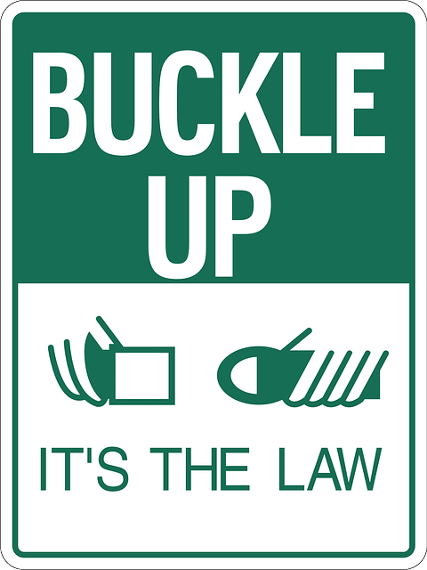 seat belts are often the law
