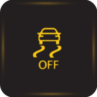 Traction Control Light 2