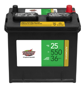 coscto interstate battery