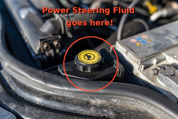 power steering reservoir location with cap